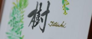 tatsuki_slide